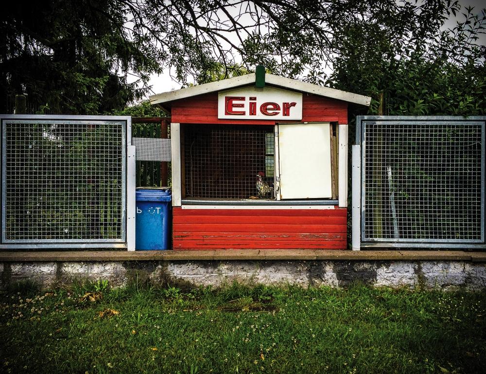 Eier-_3C_low